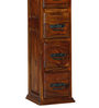 Levien Compact Chest of Drawers in Honey Oak Finish by Amberville