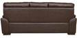 Martin Leather Three Seater Sofa in Brown Colour by HomeTown