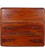 Cincinnati Chest of Drawers in Honey Oak Finish by Woodsworth