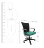 Marina Office Ergonomic Chair in Green Colour by Chromecraft