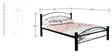 Metal Bed (Queen Size) in Black color by FurnitureKraft