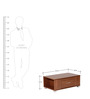 Chiyo Coffee Table In Chocolate Beech Finish by Mintwud