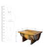 Mombo Coffee Table cum Trunk by InLiving