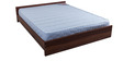Free Offer - New Spinekare 5 Inch Thick Queen-Size Mattress by Kurl-On