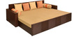 Ohio Sofa Cum Bed in Brown Colour by @home