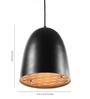 Orange Tree Black Iron Bliss Hanging Lamp