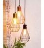 Orange Tree Gold Iron Cora Hanging Lamp