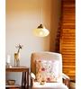 Orange Tree White Iron Norton Hanging Lamp