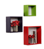 Paquito Contemporary Wall Shelves Set of 3 in Multicolor by CasaCraft