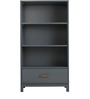 Philips Book Shelf in Grey Colour by Asian Arts