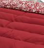 Pillow Top Hammock Double by Slack Jack