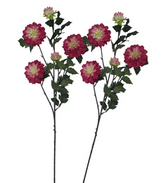 Pollination Artificial Shaded Pink Daisy Flowers - Set Of 2