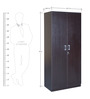 Prime Two Door Wardrobe in Wenge Colour by HomeTown