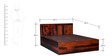 Lacanoia Queen Bed with Storage in Dual Tone Finish by Woodsworth