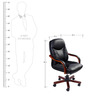 Rich & Famous Medium Back Executive Chair in Black Colour by Stellar