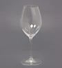 Riedel 420 ML Tempranillo Red Wine Glass - Set of 2