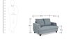 Roman Reverie Two Seater Sofa in Steel Grey Colour by Urban Living