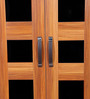 Rose Two Door Wardrobe in Teak Finish by Home City