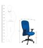 Royal Medium Back Ergonomic Chair in Blue Colour by Starshine