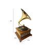 Saaga Brown & Gold Sheesham Wood Gramophone Player with Brass Work
