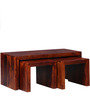 Olney Coffee Table Set in Honey Oak Finish by Woodsworth