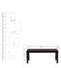 Saul Dining Bench - Rubber wood with Veneer by Tube Style