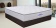 Sentinel 6 Inch Thick Queen-Size Both-Side Pillow Top Mattress by Springtek