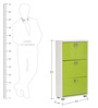 Enichiro Three Door Shoe Cabinet in High Gloss Green Colour by Mintwud
