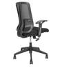 Sky Eco Ergonomic Chair in Black Colour by Star India