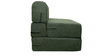 Sofa cum Bed in Green Colour by RVF