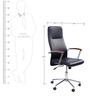Spine High Back Executive Chair in Black Colour by Stellar