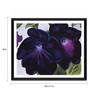 Tallenge Photographic Paper 24 x 1 x 18 Inch Modern Masters Collection Petunias by Georgia O'Keeffe Framed Digital Art Print
