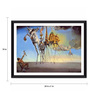 Tallenge Photographic Paper 24 x 1 x 18 Inch Modern Masters Collection The Temptation Of St. Anthony by Salvador Dali Framed Digital Art Print