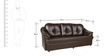 Three Seater Sofa in Brown Colour by Parin