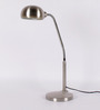 The Light Store Silver Mild Steel Study Lamp