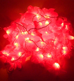 Tu Casa 10 Mtr Long-Flower String Light-45 Bulbs - 1413829