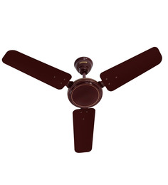 usha ace ex brown ceiling fan 3543 inch ceiling fan