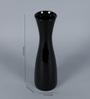 VarEesha Black Ceramic Long Bottle Vase