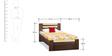 Woody Single Bed in Acacia Dark & Maple Finish by Debono