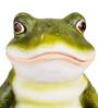 Wonderland Frog on Mushroom