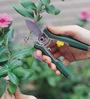Wonderland Mini Trimming Floral Shears