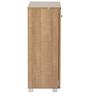 Yori Two Door Multipurpose Storage Cabinet in Oak Finish by Mintwud