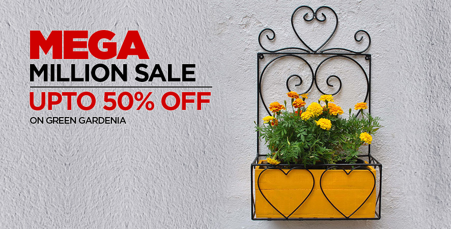 Mega Million Sale upto 50% off  On Green Gardenia
